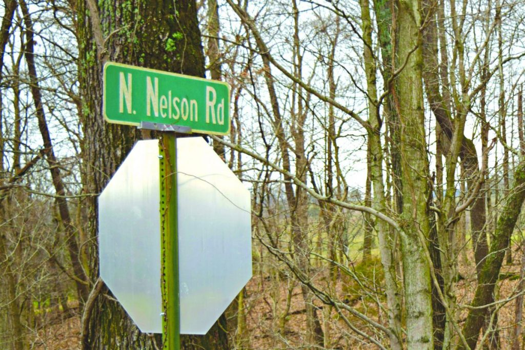 Skeletal remains were found on Sunday, February 23 in a field on North Nelson Road in the Hardyville area.  Photo by Mary Beth Sallee/News-Herald